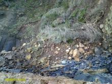 The same recent landslide, looking North.