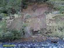 Again, the same landslide, only looking upward and to the East. Notice the inverted, dangling tree at the top of the slide area.