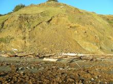 This was one of the larger landslides along the headland area.