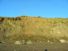 This was the other large landslide along the bluff and was closer to the middle of the mile.