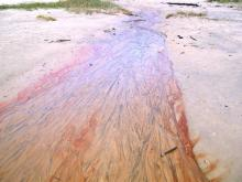 Red slimy, but gritty substance in sand within drainage.