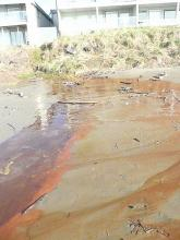 Red/orange alga-like growth in water draining to ocean from same drainage pipe of  Nov. '08 sewage leak.