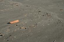 The debris was very light and mostly small wood pieces.  a clam shell here and there.