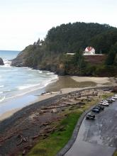 Dead Fin Whale on Heceta Lighthouse beach