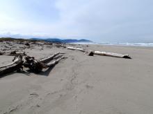 Near jetty looking towards Cape Meares