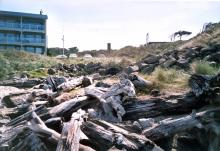 Parking Lot and trail to beach. Driftwood Shores Resort at left, storm drain center middle below distant rectangular pillar; among logs. Residence at right atop bluff. Camera pointed east.