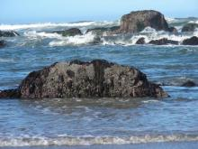 This is the rock where we saw the Sea Cucumbers.