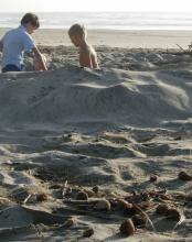 Kids digging in the sand within a few feet of piles of horse manure