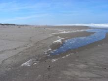 The beach is fairly flat today and the surf is coming through in various areas.
