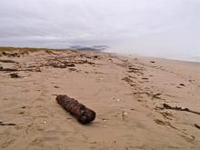 Near the south jetty of Tillamook Bay looking south towards Cape Meares