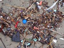 lots of plastic bits on beach this winter