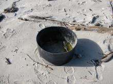 The tub and bottles inside represent the largest example of debris I found on the beach this day.