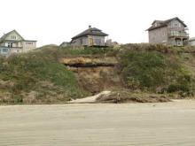 Mass slumping of the cliff below a house just south of the Nye Beach turnaround. I didn't remember seeing it before, but someone who lives in the neighborhood told me it happened in December 2008.