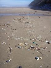 Lots of small plastic bits of trash washed up with the tide.
