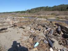 This shoreline was filled with bottle and other plastic debris.