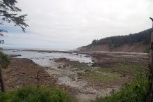 Shell Island is just visible on the left at the end of the exposed rocks leading out into the sea.