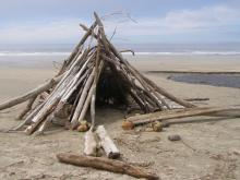 A driftwood beach shelter was built along the south shore of Moore Creek, near the high tide line.
