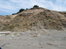 I've taken this photo for a comparison for this winter's erosion.  This area is an active landslide area most winters.