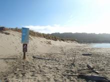 While this area would certainly be our pick to camp as the north wind is blocked by the dunes, it is illegal to do so because it would cause harm to nesting Snowy Plovers.  We are glad that clear signage about the camping rules are finally posted.