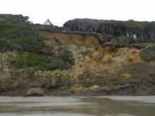 Fairly large sand and rockfalls and vegetation undercuts indicate continuing erosion of the bluff below houses