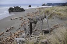 Looking from remains of decade old Driftwood Condos north to Windsurfer Rock and Cape Sebastian.