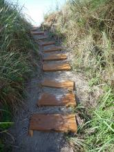 Trail carved into foredune and steps erected on landward side of foredune