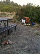 Woodstove and firepit have been added to picnic site adjacent to foredune.
