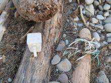 Example of litter at this site