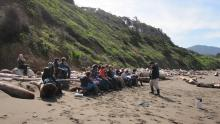 These are Driftwood Elementary kids that spearheaded a Marine Debris Monitoring Survey!