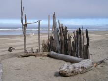 Wind shelter built of large driftwood, one of several near the mouth of Grant Creek.