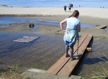 Temporary footbridge across Big Creek in front of Agate Beach State Park