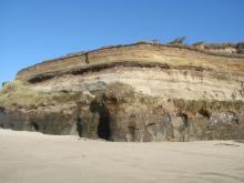 Beach Bluff