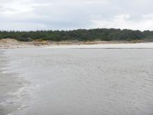 Twomile Creek mouth joins New River in the far right hand corner of this photo.