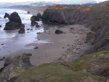 The sand is being removed and leaving a cobble beach at the base of the headland.  At the lower right in this picture, you can see the invasive ice plant on a rock.