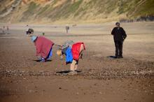 The weather was warm, wind calm, as folks searched for agates in the exposed gravel at low tide.