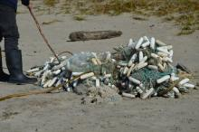 Many different types of nets and floats comprised this deposit on the beach north of SW 33rd St.
