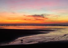 First sunset of the New Year on Nye Beach