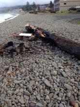 Fire pit evidence