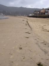 Sand removal from high tide