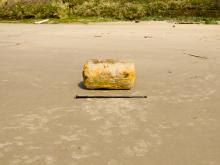 "Large styrofoam float washed up on Nye Beach, which may or may not be tsunami debris. Length of walking stick 51"" (130 cm)."