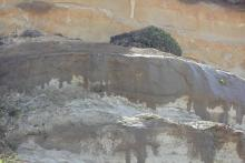 Taken about .5 mile from Ona Beach.  Looks like increase in water seepage at the top of the cliffs.