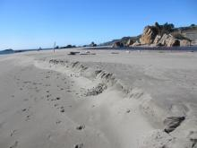 View at low tide (+2.0 FT) showing the beginning of seasonal beach erosion at Harris Beach S.P. Picnic Area, Goat Island (Bird Island).