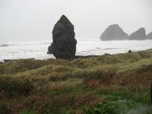 Photo looks seaward toward two monoliths, the onshore one masking the offshore one. Note logs in surf