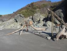 A beach monster, a giant spider, a catapult, or ???