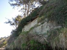 More cliff erosion farther south of other photos