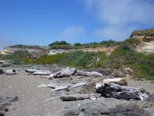 Erosion of bluff north of the parking area