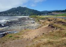 Still looking north toward downtown Yachats, slightly north of Agate Cove. View from beach.