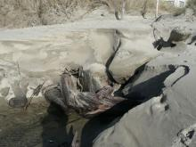 What started out as a hand-span wide creek is now about 4 ft across. It's uncovering some pretty driftwood.