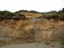 Worst erosion stabilizing?