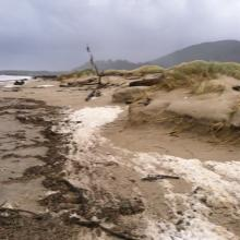 As I neared the jetty, there was some minor erosion to the smaller newly formed dune.